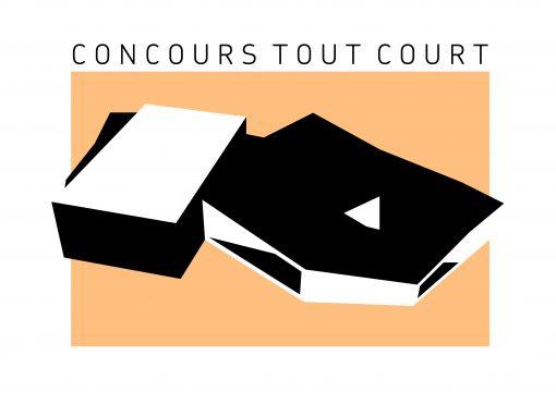 CONSTRUCTION D'UN ÉQUIPEMENT CULTUREL À ÉCOUFLANT (49)
