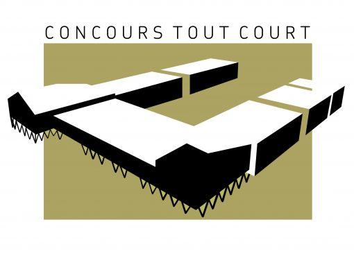 COLLÈGE ANDRÉ TIRAQUEAU À FONTENAY-LE-COMTE (85)
